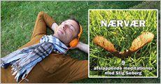 Download til Lydbogen Nærvær - 9 afslappende meditationer med Stig Seberg, værdi kr. 165,-