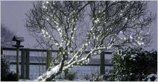 LED-solcelle lyskæde fra Shoppio, vælg ml. 100 ell. 300 lys, værdi op til kr. 549,-