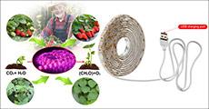 Er du vild med at dyrke dine egne planter? Få 1 meter LED plantelys til indendørs dyrkning fra 4mobil, værdi kr. 199,-