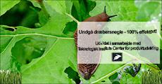 Kom af med dræbersnegle, vælg ml. flere effektive tilbud forhandlet fra Arbro, værdi op til kr. 747,-